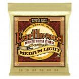 Ernie Ball Earthwood 80/20 M/LT 12-54